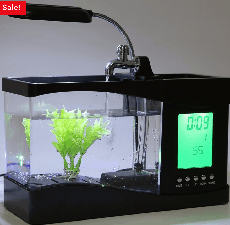 Best Aquarium Lamps for Your Aquarium