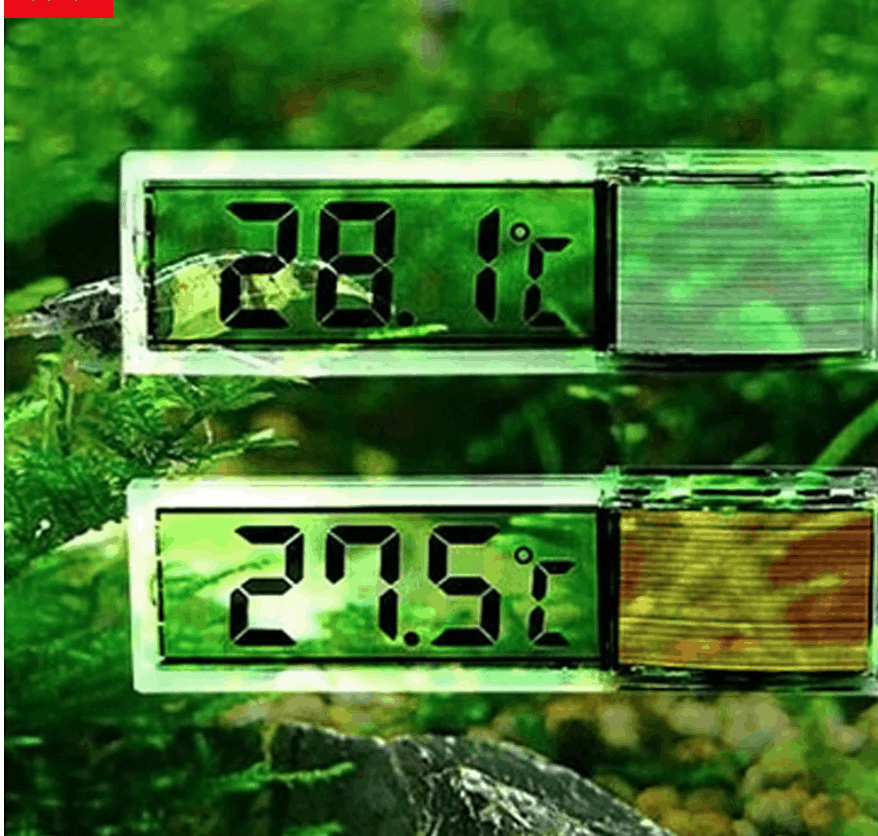 Best Aquarium Thermometers for Your Fish Tank