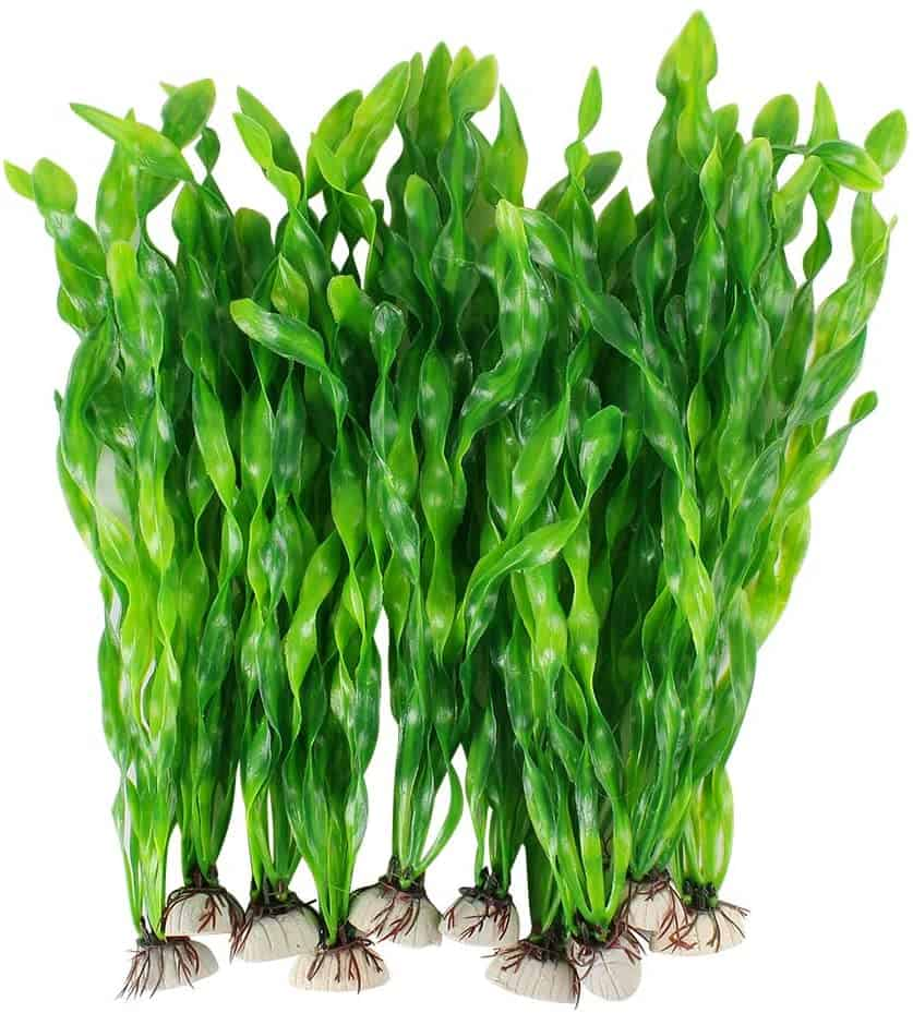 Artificial Fish Tank Plants That You Can Use